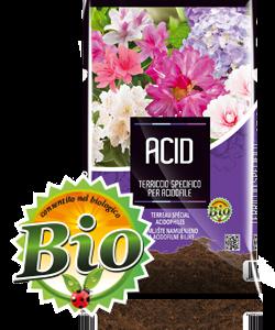 Acid-3d-Frontale
